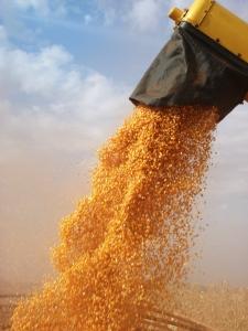 operções agrícolas 024